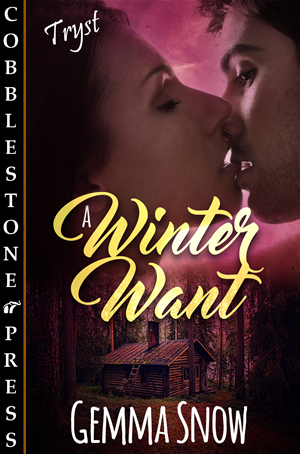 A Winter Want_300X454