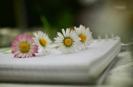 notebook-1405306_1920